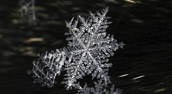snowflake-550