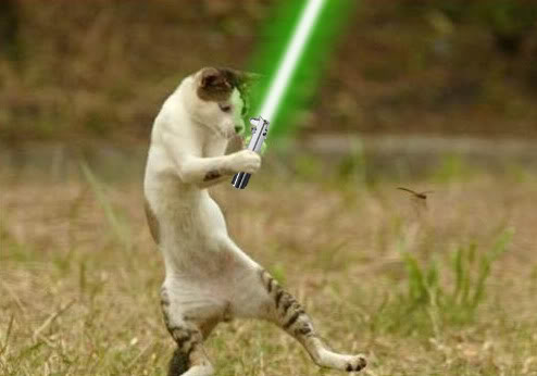 Cat-with-Green-Lightsaber