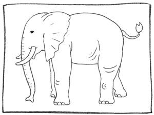 How To Draw An Elephant Boys Life Magazine