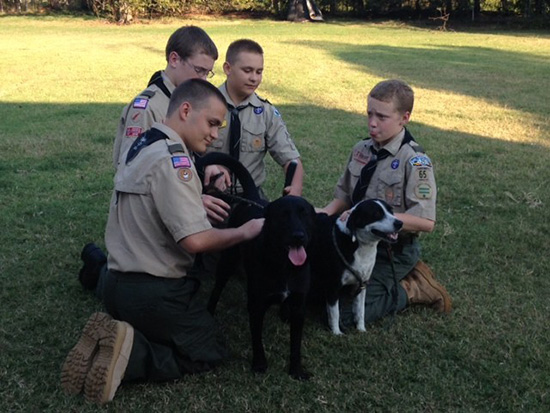 Harrah Scouts save dog