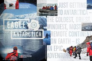 Eagle in Antarctica