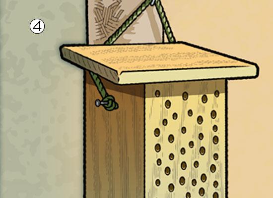Build A Bee house step 4