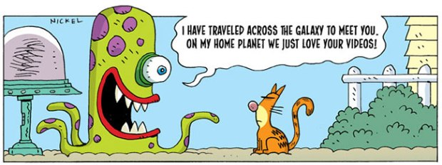 30 Funny Cat Jokes And Comics Scout Life Magazine