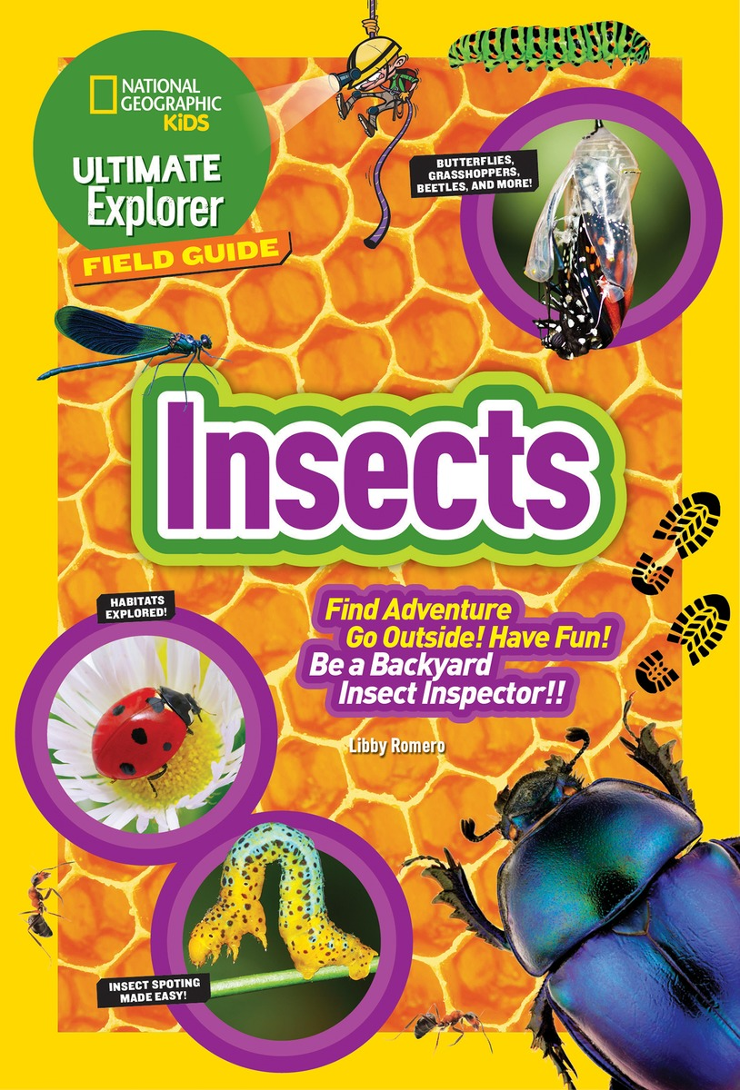 ultexp-fg-insects